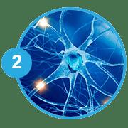 Εικόνα νευρικού κυττάρου